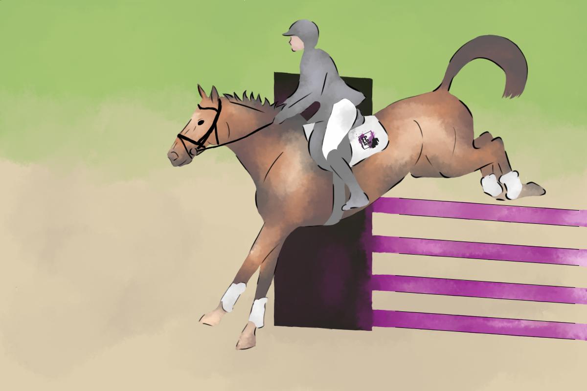 So einfach landet Dein Pferd nach dem Sprung im richtigen Galopp